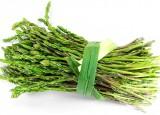 Asparageyser Asparagus