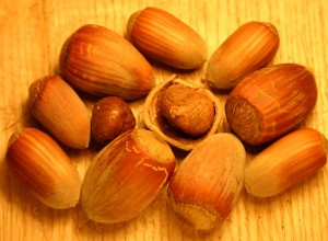 Precocious Hazelnut