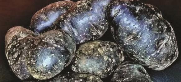 potato-purple-ecos
